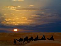 Тунис 11